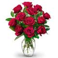 12 Red Long Stem Rose Bouquet