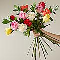 Mixed 1 Dozen Long Stem  Roses  - VASE INCLUDED