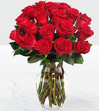 Day Red 18 Long Stem Roses - VASE INCLUDED