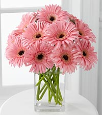 Breathtaking Blooms Daisy Bouquet - VASE INCLUDED