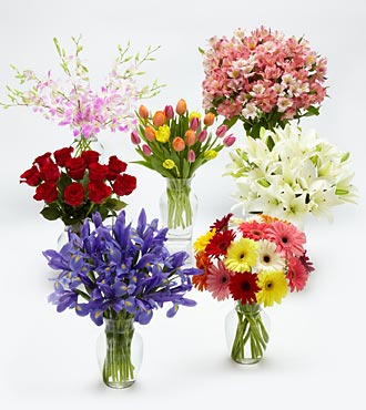 Monthly Flower Gift Plan - 3 Months with Vase