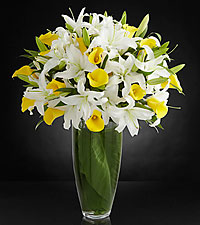 Vivacious Luxury Lily Bouquet - 40 Stems - VASE INCLUDED